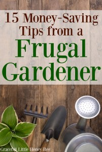 Check out these money-saving tips from a frugal gardener on gracefullittlehoneybee.com