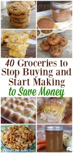 Check out this list of 40 Groceries to Stop Buying and Start Making to Save Money including taco seasonsing, chicken broth, peanut butter cookies and more on gracefullittlehoneybee.com
