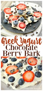 Try this super easy Greek Yogurt Chocolate Berry Bark for a fun and healthy snack on gracefullittlehoneybee.com