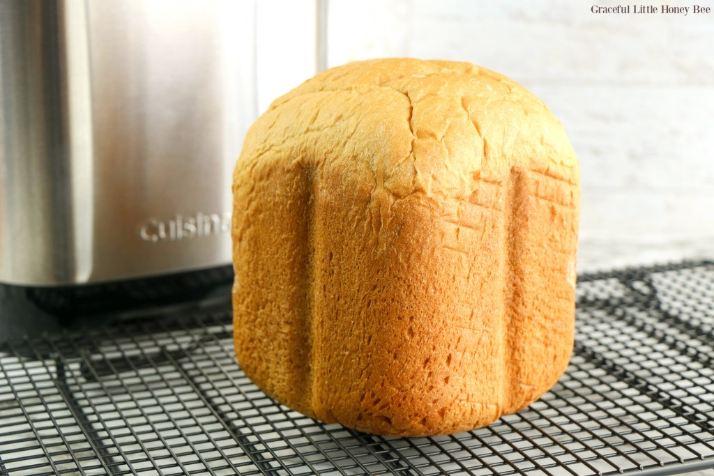 A fresh loaf of bread machine white bread sitting on a cooling rack.