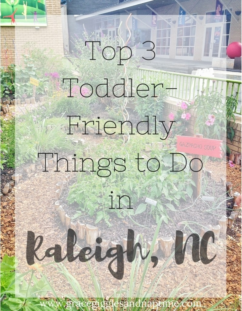 Top 3 Toddler-Friendly Things to Do in Raleigh, NC from http://www.gracegigglesandnaptime.com
