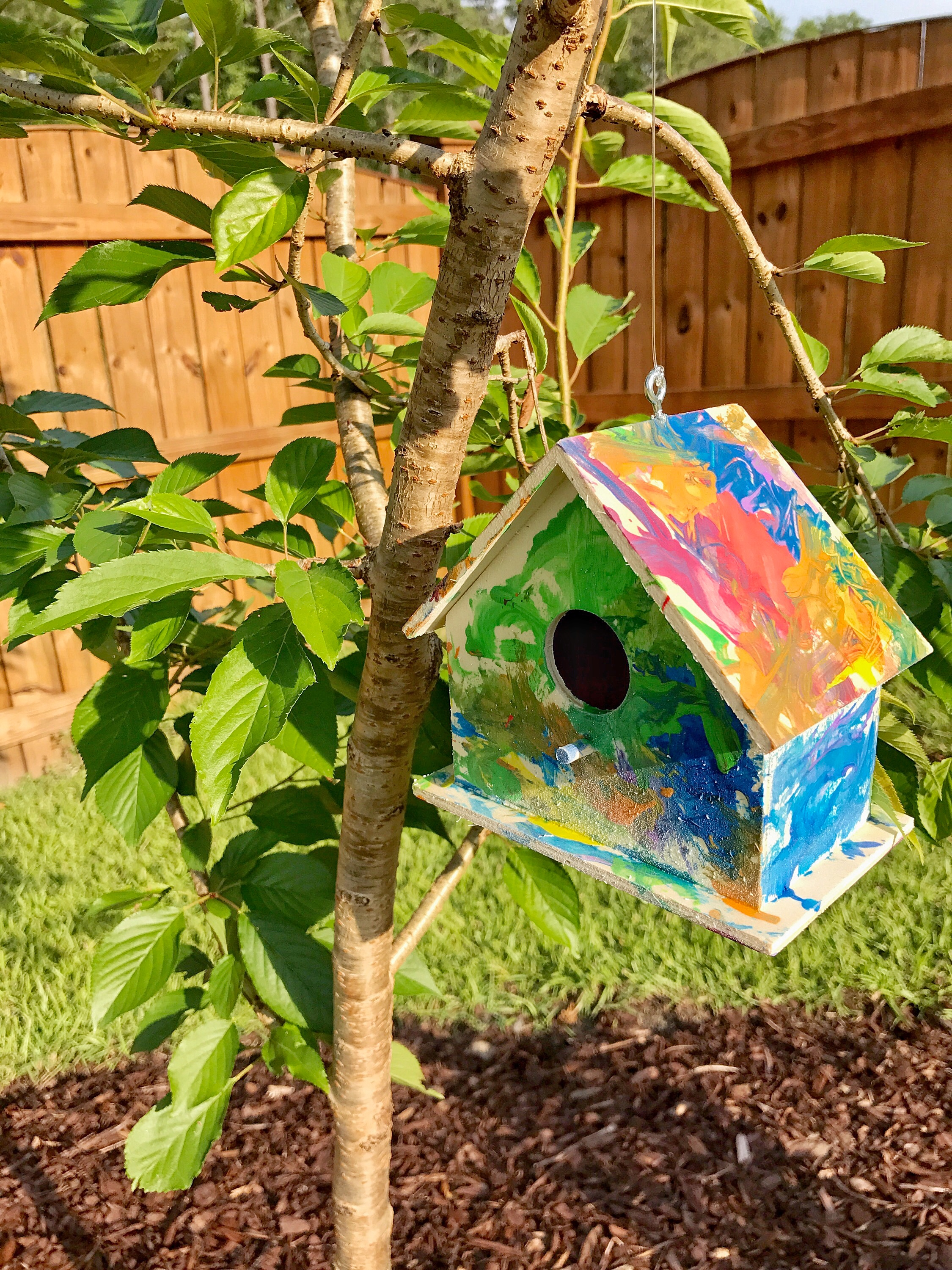 Painted Birdhouse Craft