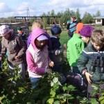 Wycieczki szkolne jednodniowe – Cztery pory roku na Kurpiach