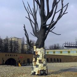 Pawiackie drzewo