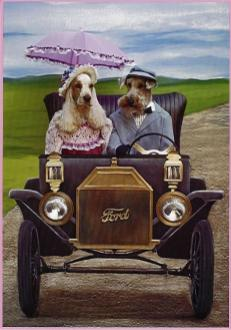Gracie's Tin Lizzie Greeting Card Cover
