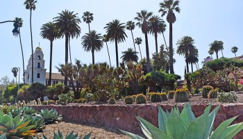 the Historic Cactus Garden in Beverly Gardens Park in Beverly Hills, California