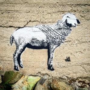 LA STAA - Pure Wool