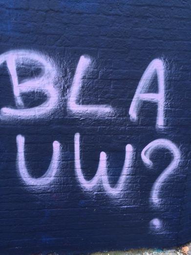 Graffiti Straat. Why Blue?