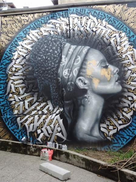 Snek, Grenoble Street Art Fest