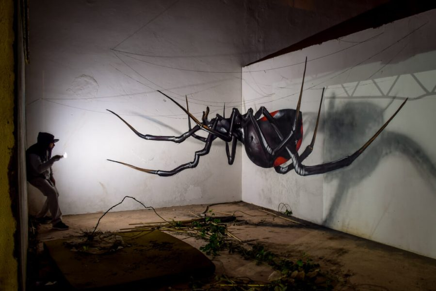 Odeith Black Widow Anamorphic. Photo credit Odeith
