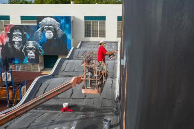 raw-project-wynwood-street-art-miami-photo-iryna-kanishcheva-_jorit-agoch-1