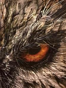 hua-tunan-night-luminescent-pearl-print-close-up-owl-detail-28