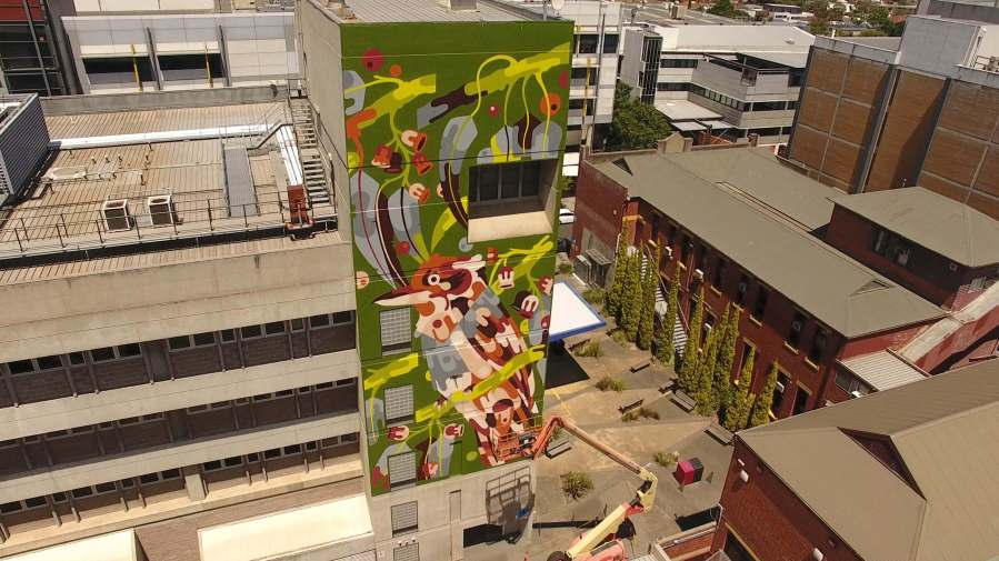 Photo-credit-Glenn-Snashall-street-art-melbourne-Artist-Reka