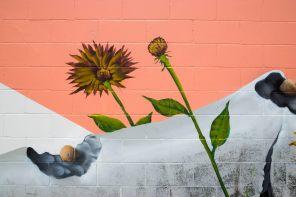 PangeaSeed-Foundation-Sea-Walls-Murals-for-Oceans-Gainesville-Ruben-Ubiera-Iryna-Kanishcheva-20