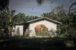 Splash-and-burn-palm-tree-oil-sumatra-Pixel-Pancho-Halaban