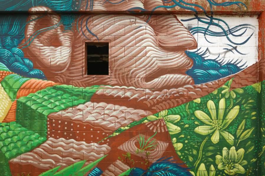 Jason Botkin, Pangeaseed Foundation, Sea Walls: Murals for Oceans Street Art Festival Churchill, 2017. Photo Credit Tré Packard