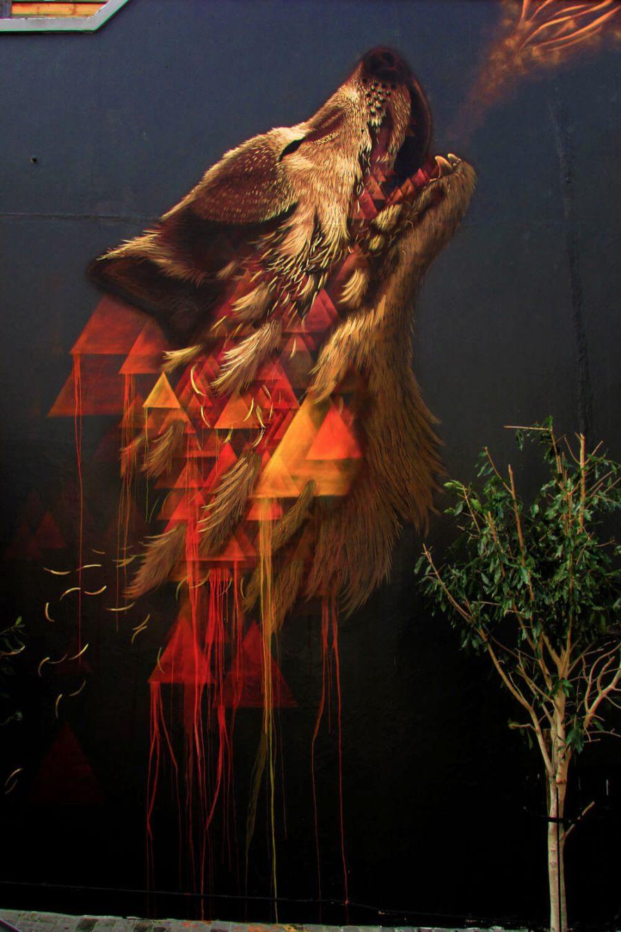 Sonny, The Buitengraght Wolf, Cape Town. Photo Credit Sonny