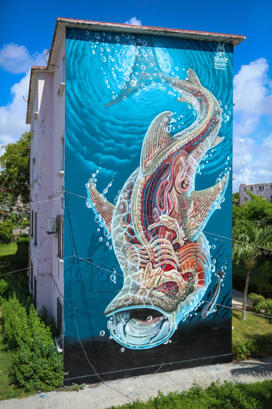 Nychos, Sea Walls: Artists for Oceans Street art festival Cancun, Mexico 2017. Photo Credit Tre' Packard.