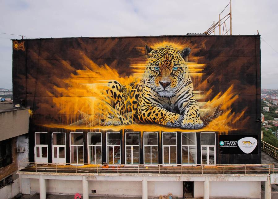 Sonny, To the Bone Street Art Mural, Far Eastern Leopard, Vladivostok Russia 2017. Photo Credit Tess Cunliffe.