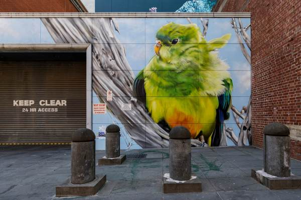 street-art-upper-west-side-precinct-melbourne-australia-pc-nicole-reed-dvate