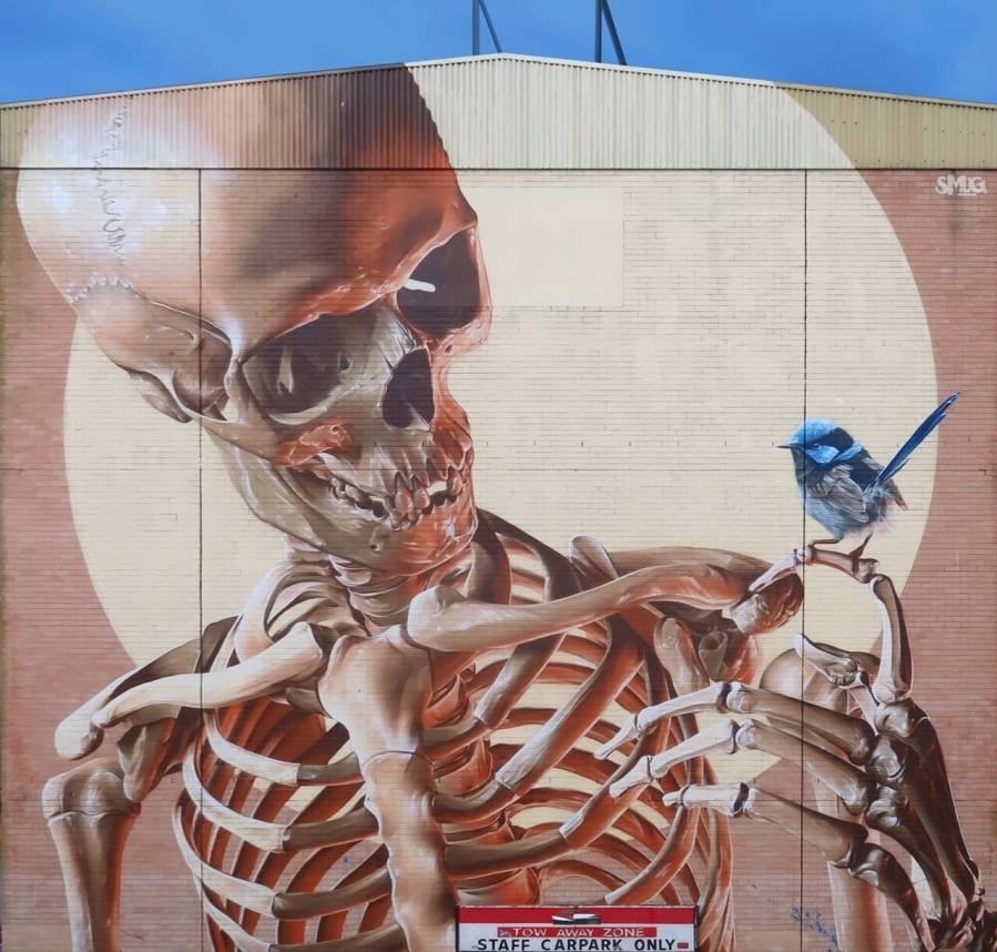 SMUG, The Big Picture Fest, Street Art Festival, Frankston, Victoria, Melbourne. Photo Credit @vanstheomega