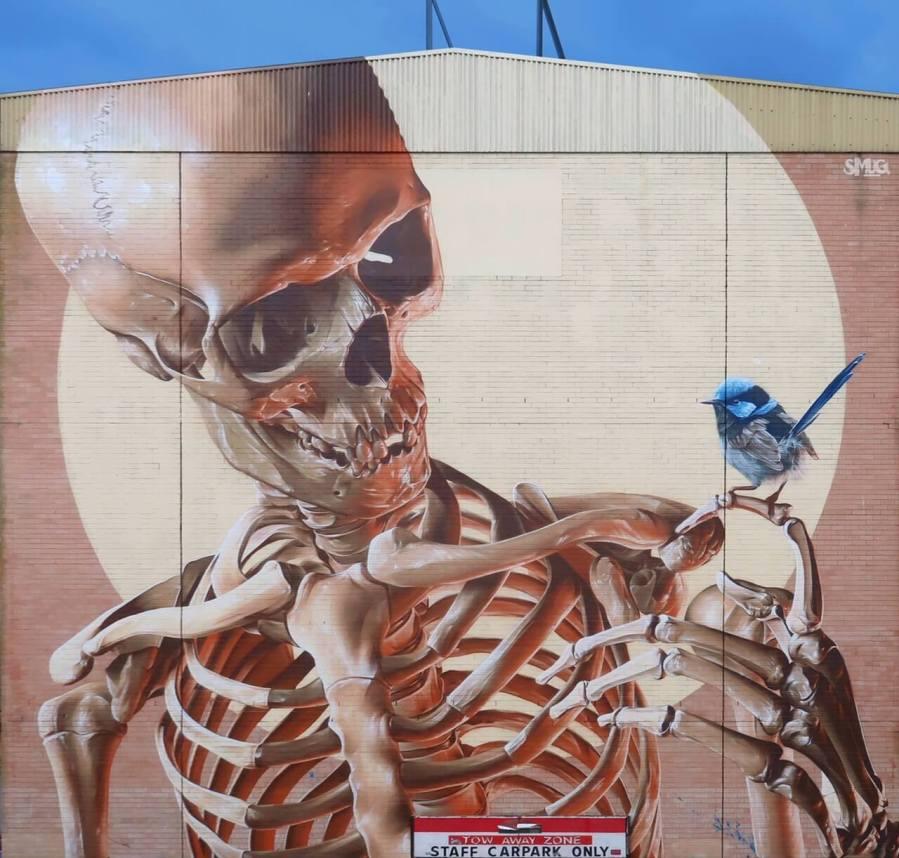 SMUG, The Big Picture Fest, Street Art Festival, Frankston, Victoria, Melbourne. Photo Credit @vanstheomega