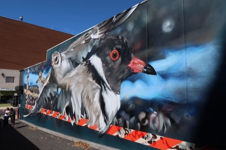 DVATE, The Big Picture Fest, Street Art Festival, Frankston, Victoria, Melbourne. Photo Credit @vanstheomega