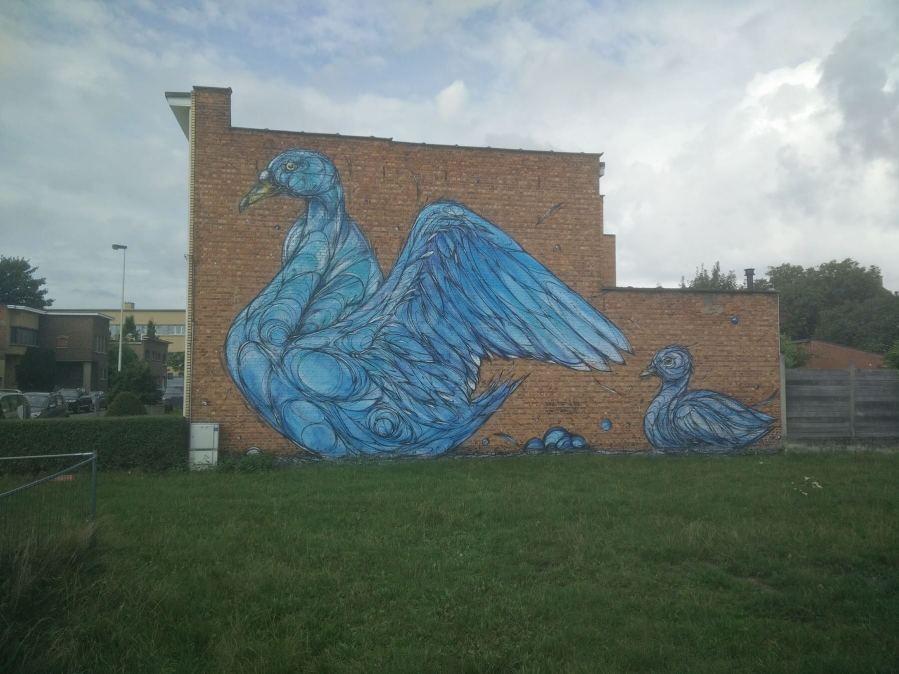 Dzia, Street Art Antwerp, Belgium