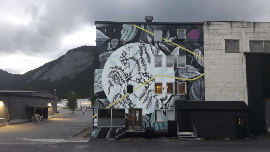Fabio Petani, UpNorth Festival, Rognan, Norway 2018. Photo Credit UpNorth Festival