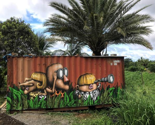 Ador-street-art-Reunion-island-2018-La-Jungle