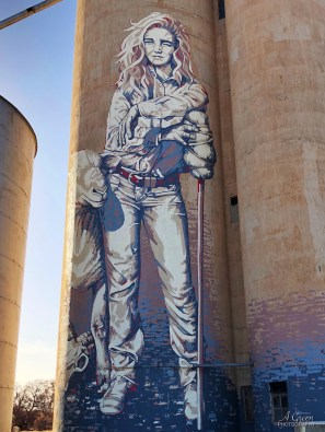 Kaff-eine, Wimmera-Mallee Trail Silo Art Trail -Rosebery was completed in late 2017 and is the thirteenth silo in the Australian Silo Art Trail. Photo Credit Annette Green