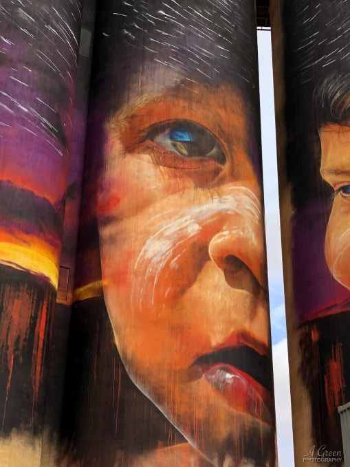 Adnate, The (Wimmera-Mallee) Silo Art Trail -Sheep Hill. Photo Credit Annette Green