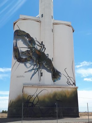 D'Vate – South Australia Silo Art Trail –Waikerie were the twenty fifth silos to be completed in 2018. Photo CreditJanet Gregory