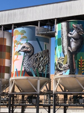 Brenton See – PUBLIC Silo Trail of Western Australia -Newdegate Silos were completed in May 2018. Photo Credit Annette Green