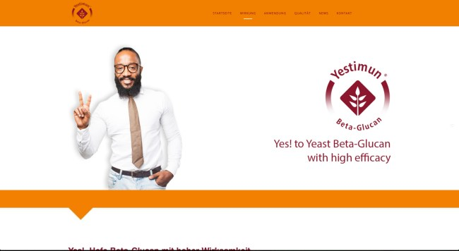 Yestimun® Webdesign, redesign, webseite, responsive webdesign, mobile webdesign, wordpress, multi language, waldbrand media, 2strom agentur, Essen, ruhrgebiet, bierhefe