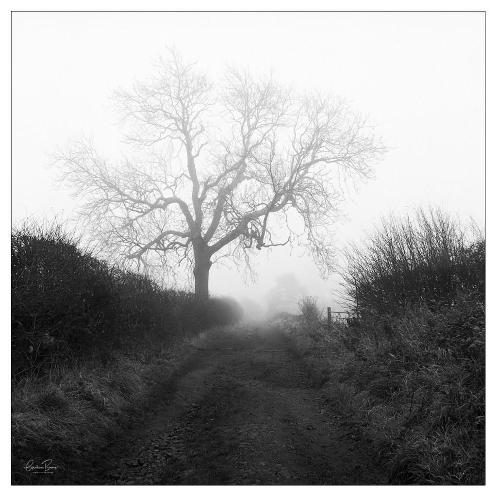Scholes Cleckheaton Foggy Wellands Lane