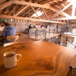 Canon 6D Review Sightglass Coffee SOMA