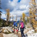 Canon 6D Review Banff National Park