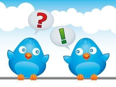Two birds tweeting