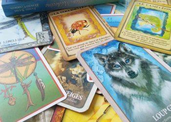 Tarots Cartes Oracle Cours Gratuits Graine D Eden