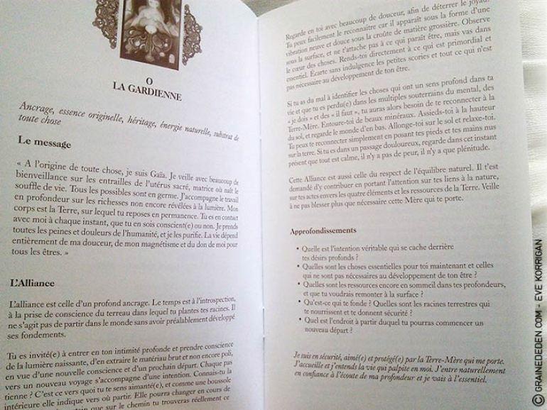Le Cercle d'Alliance de Béatrice Lhériteau - Graine d'Eden Développement personnel, spiritualité, guidance, oracles, jeux et tarots divinatoires - La bibliothèque des Tarots
