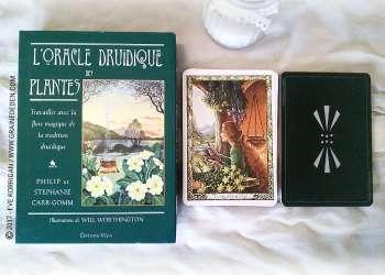 Oracle Druidique des Plantes