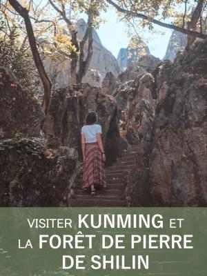 Mes premiers pas en Chine : Kunming et la Forêt de Pierre