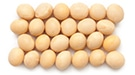 High Protein Soybeans