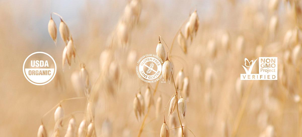 Certified Organic, Gluten-Free, or NON-GMO Products | Grain