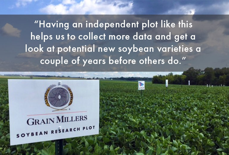 How Grain Millers Keeps Up With Year-Round Oats: Food Navigator Interview