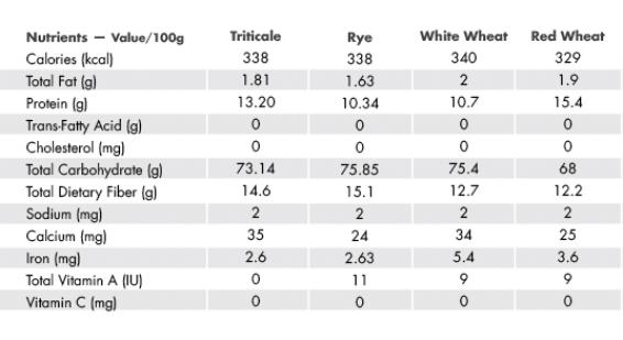 Triticale: The Underestimated Versatile Grain