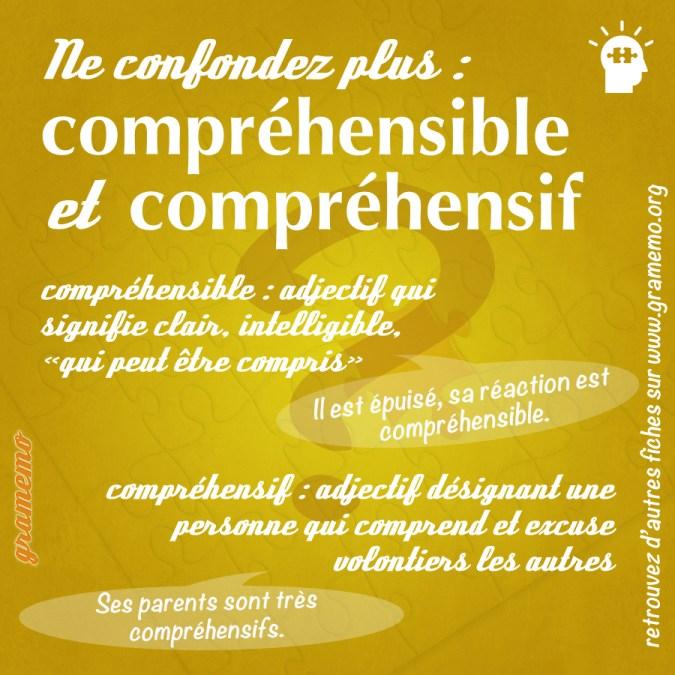 Compréhensible et compréhensif - Paronymes Gramemo