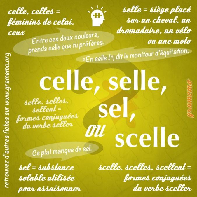 Celle selle sel scelle - Homophones Gramemo