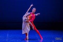 Nutcracker Amedeo Amodio and Emanuele Luzzati 05